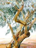 Акварель. Рисуем деревья и листья — фото, картинка — 3