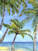 Акварель. Рисуем деревья и листья — фото, картинка — 4
