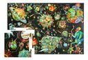 Экивоки. Космос — фото, картинка — 3