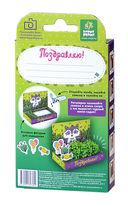 Набор для выращивания растений