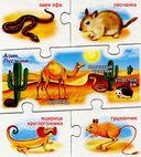 Мир животных — фото, картинка — 3