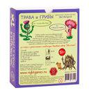 Эволюция. Трава и грибы (дополнение; 18+) — фото, картинка — 5